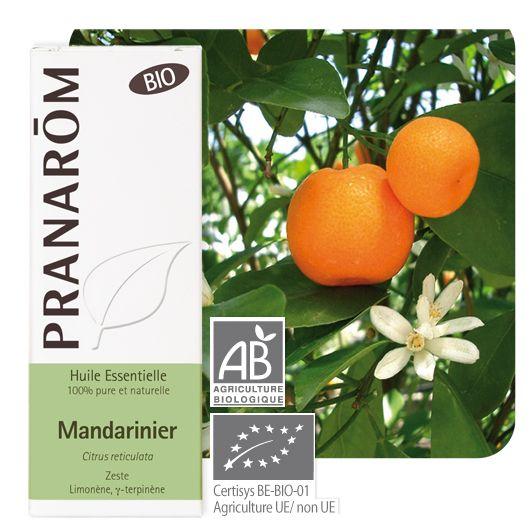 hebio_mandarinier_plante_bteph